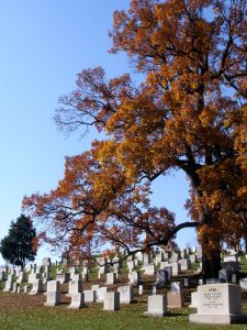 1129770_arlington_national_cemetry
